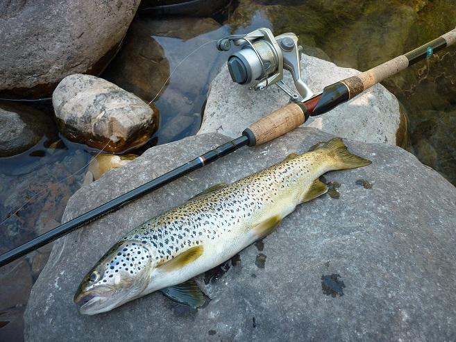 Les rapports sur la pêche le lac argazi